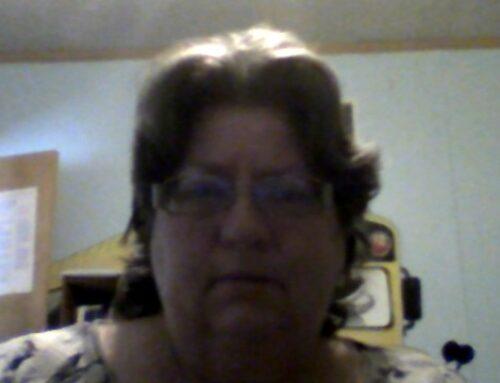 Cynthia Stout